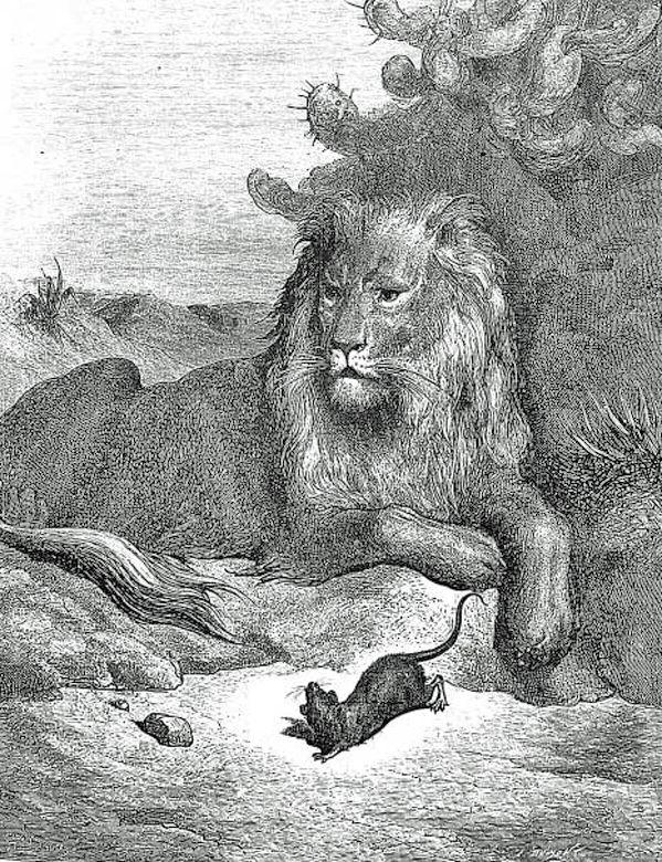 Fables de jean de la fontaine page 2 - Image le lion et le rat ...